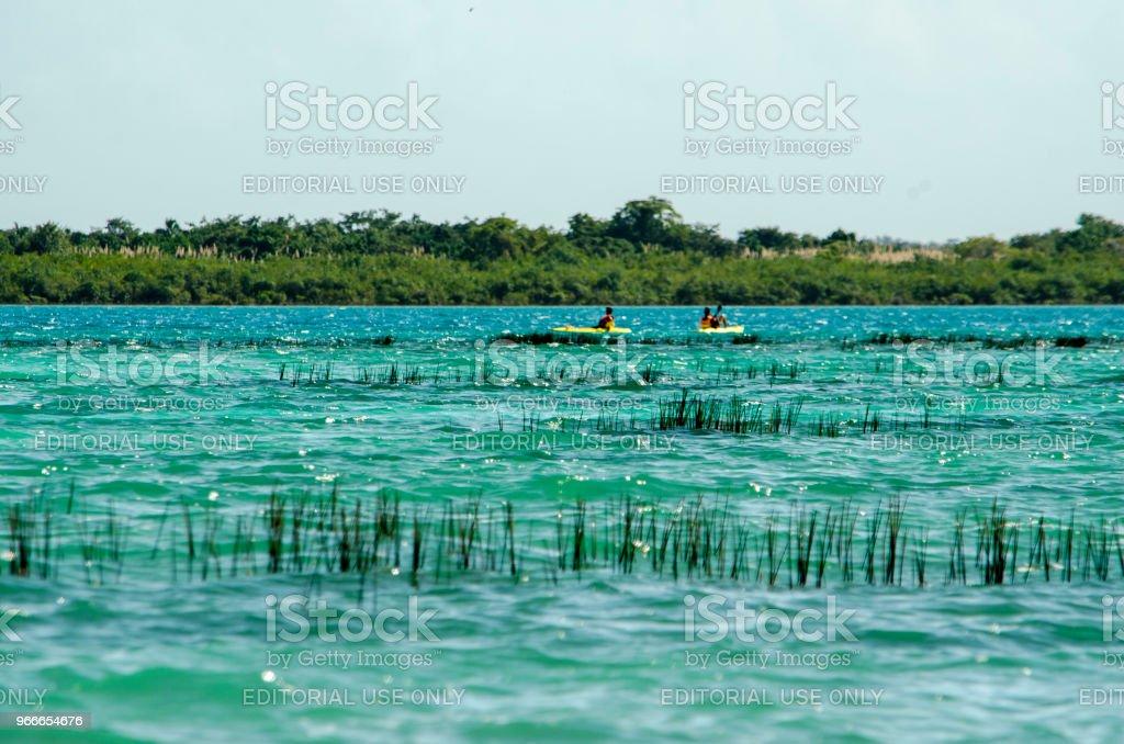 Bacalar - Laguna de los siete colores - foto de stock