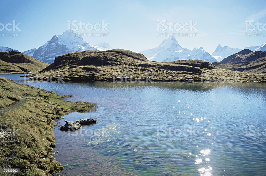 Bach alps lake royalty-free stock photo