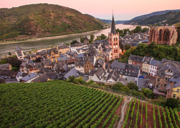 bacharach, rhine valley, germany. city panorama view with rhine river and vineyard at twilight - rhein stock-fotos und bilder
