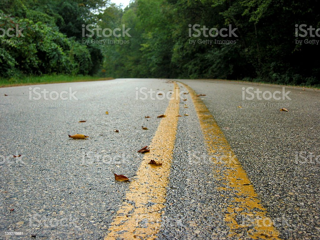 Back Country Road royalty-free stock photo