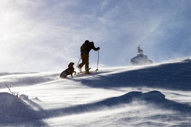 Back country skier hiking with his dog in the winter mountain in picture id1094065270?b=1&k=6&m=1094065270&s=612x612&w=0&h=hagreamasytahqgorw0l5htpd68o6aezjcv5zz4oooo=