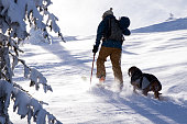 Back country skier hiking with his dog in the winter mountain