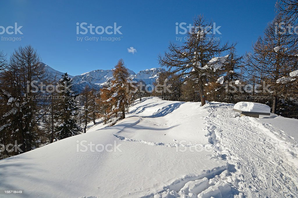 Back country skiing in scenic landscape royalty-free stock photo