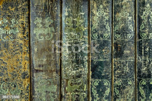 121305595 istock photo Back cover of  six worn leather textured books in a row. 954171556
