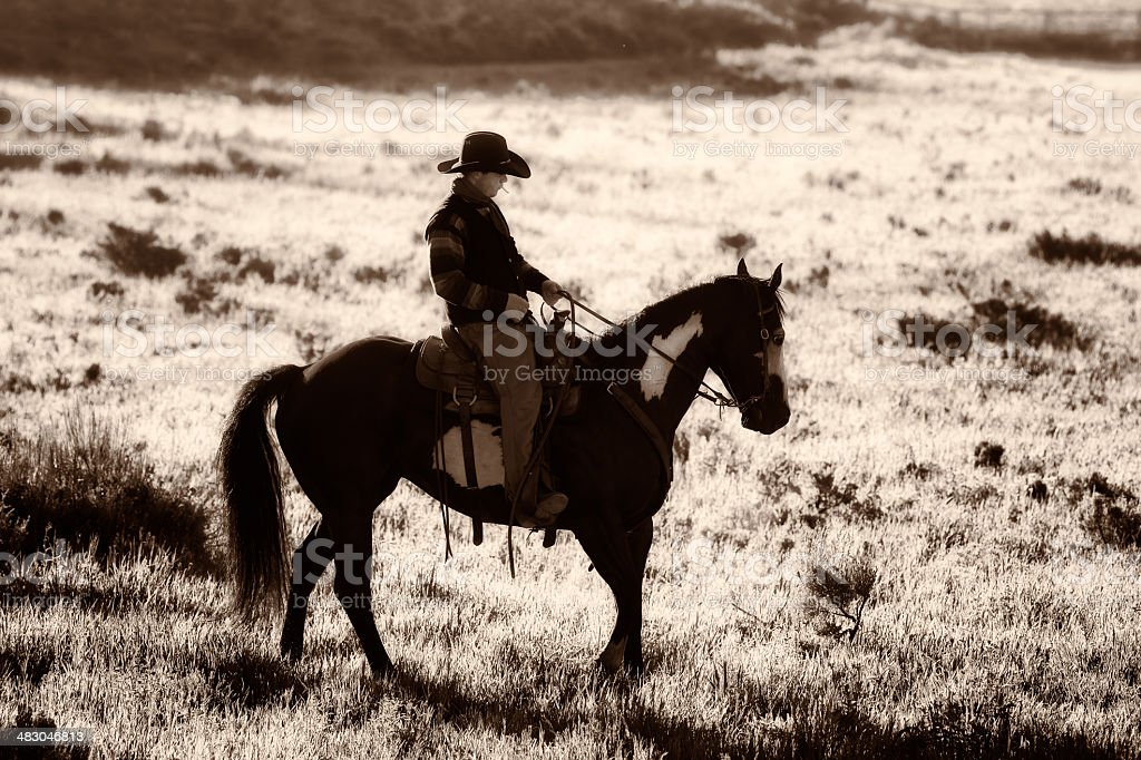 Back lit cowboy riding in sagebrush black and white stock photo