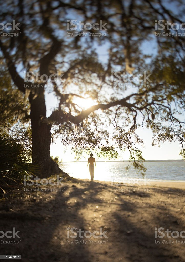 Back Lit Woman Standing by the Shore royalty-free stock photo