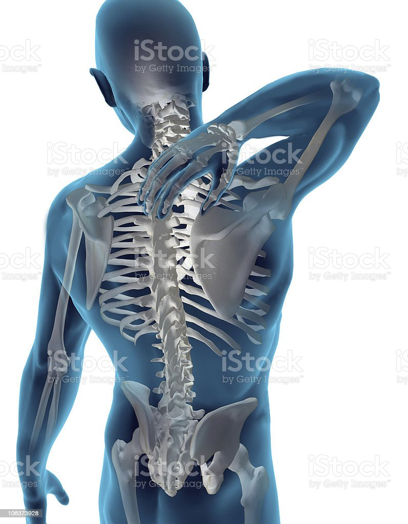 Back & Neck Pain royalty-free stock photo
