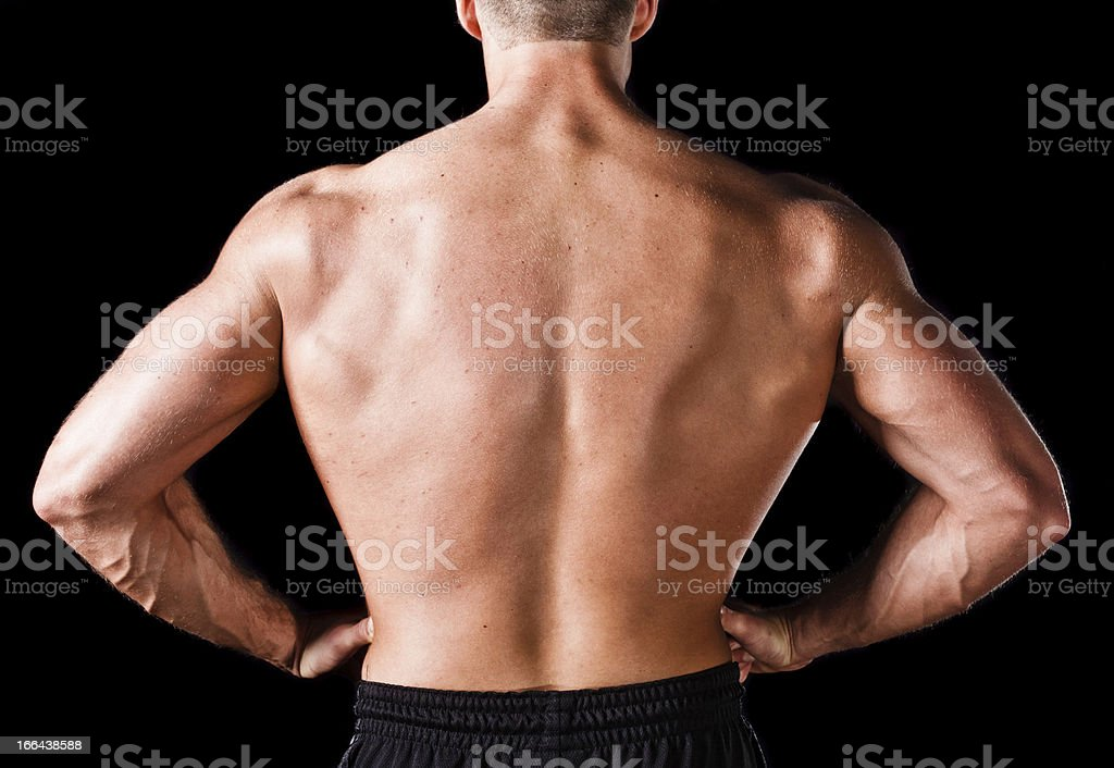 Back of a muscular man royalty-free stock photo