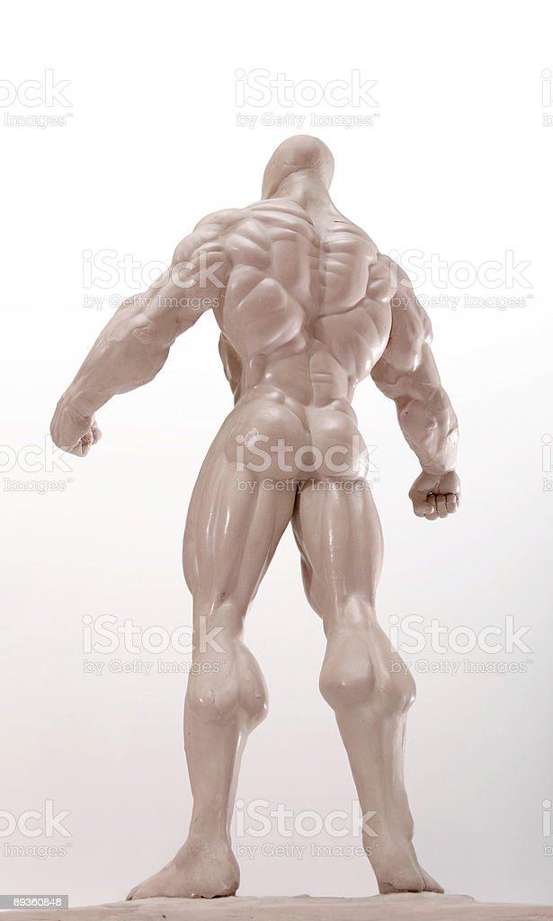 Arrière du bodybuilder sur blanc photo libre de droits