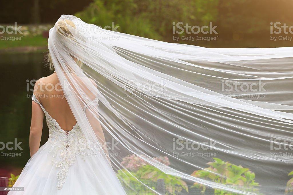 Back of Bride stock photo