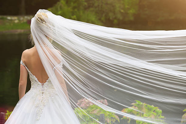 back of bride - veil stock pictures, royalty-free photos & images