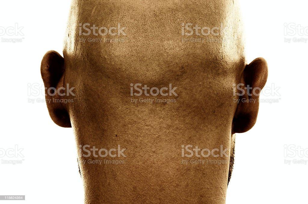 Back of head royalty-free stock photo