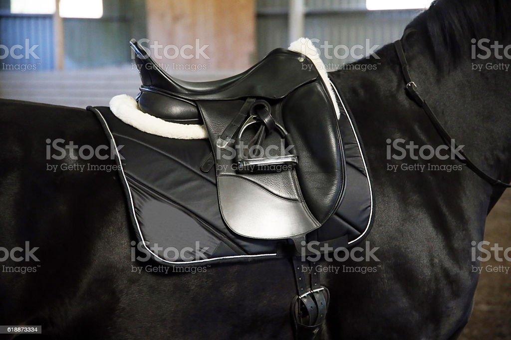 Back of saddled purebred black stallion with stirrups stock photo