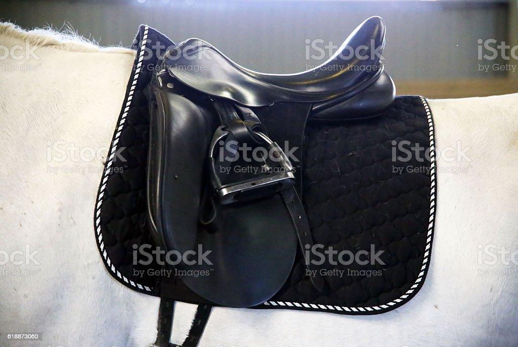 Back of saddled stallion with stirrups stock photo