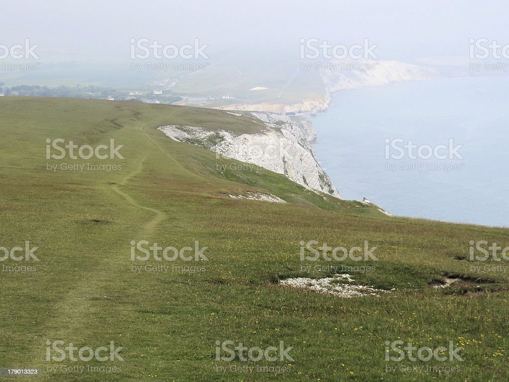 Back of Wight stock photo