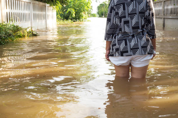 Back of woman standing in Flood. Flooding in house. Closeup on her leg. Woman wade flooding in her house. Closeup on her leg. View behind. Flooding at Loei province,  Thailand. wading stock pictures, royalty-free photos & images