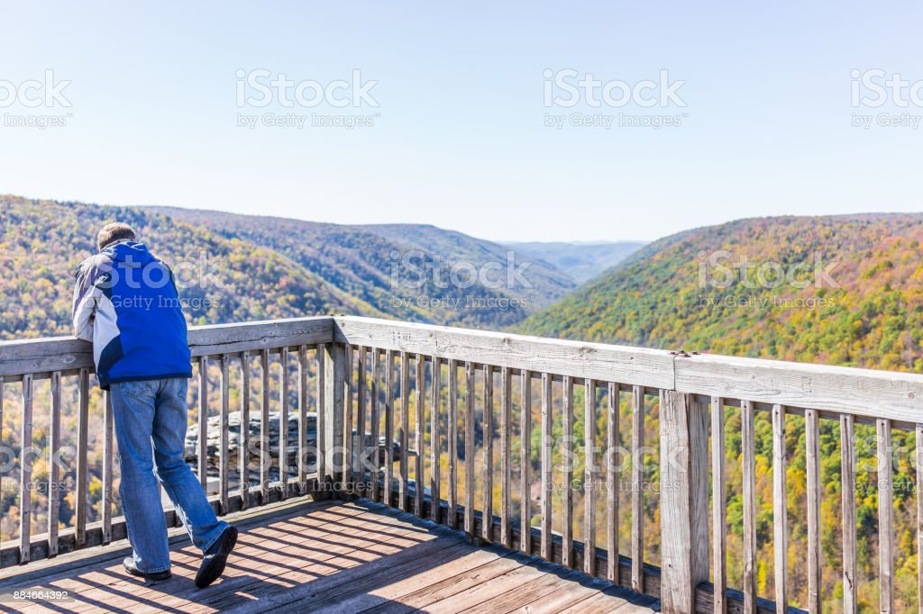 Back of young man in blue jacket looking at canaan valley mountains in Blackwater falls state park in West Virginia during colorful autumn fall season with yellow foliage on trees, rock cliff at Lindy Point stock photo