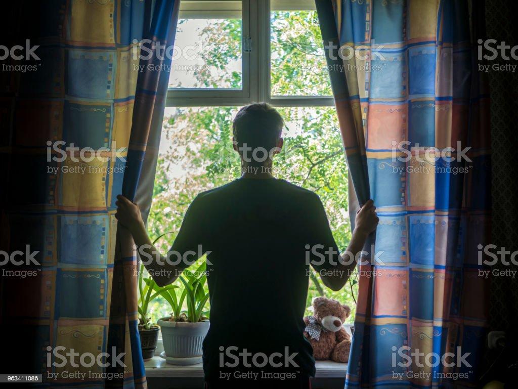 back portrait of man opening curtains of the window in bedroom - Zbiór zdjęć royalty-free (Archiwalny)