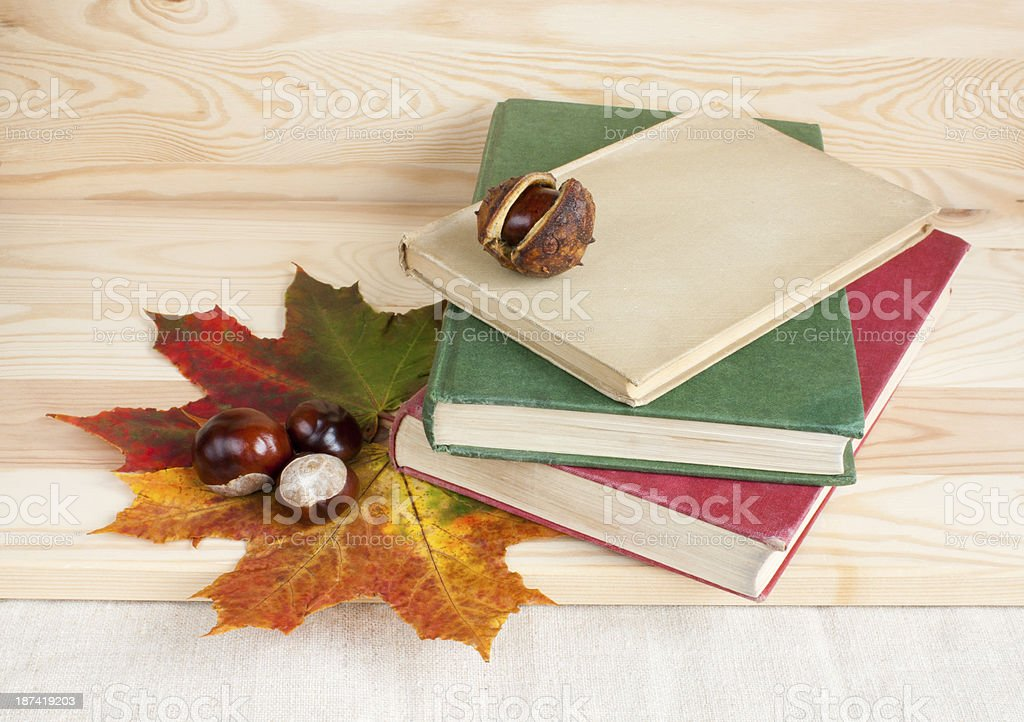 Back to college autumn old books. royalty-free stock photo