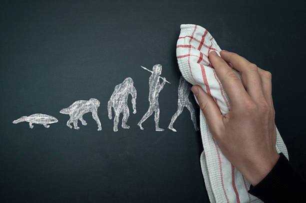 back to evolution - darwin stock photos and pictures