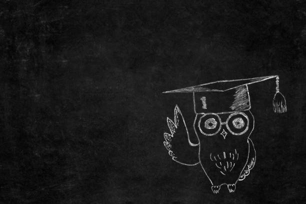 Back to school background knowledge owl drawn on school blackboard picture id1016592606?b=1&k=6&m=1016592606&s=612x612&w=0&h=4btpb1adqtahshwr85t4o4tvl hpju5ijrwjz0ee9v8=