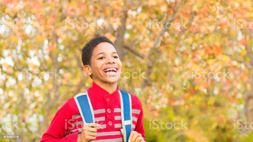 Back to School. Cute Boy or Student with Backpack. stock photo