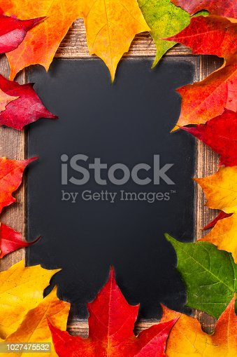 istock Back to School, Education concept - Autumn leaves border  frame on a black  chalkboard background with copy space. 1027475532
