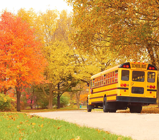 back to school - school buses stock pictures, royalty-free photos & images