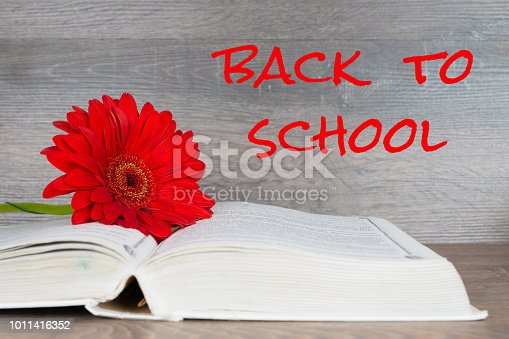 istock back to school - text over black board 1011416352