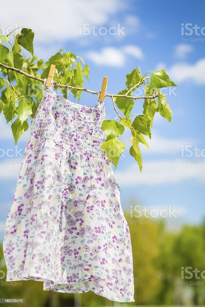 Back to the nature royalty-free stock photo