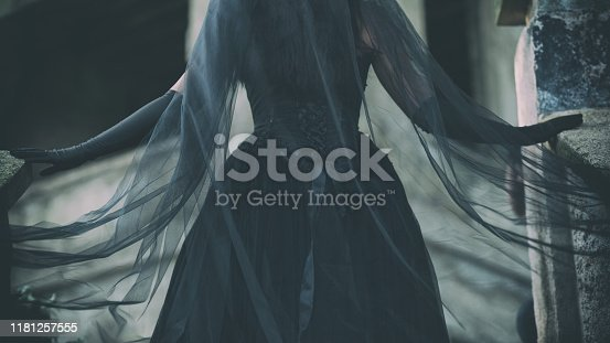 Back view of a beautiful black wedding gown, in Victorian style, with long, black flowing veil