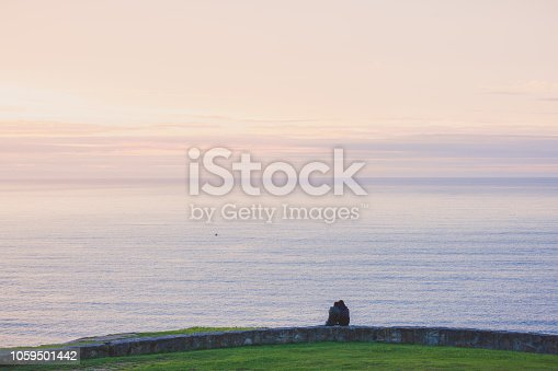istock Back view of a couple silhouette hugging and watching sunset on the beach 1059501442
