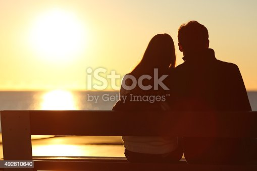 istock Back view of a couple watching sun on the beach 492610640
