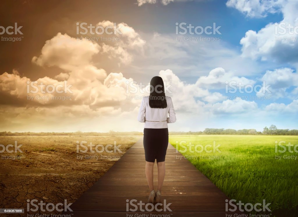 Back view of business woman standing between the changing environment stock photo
