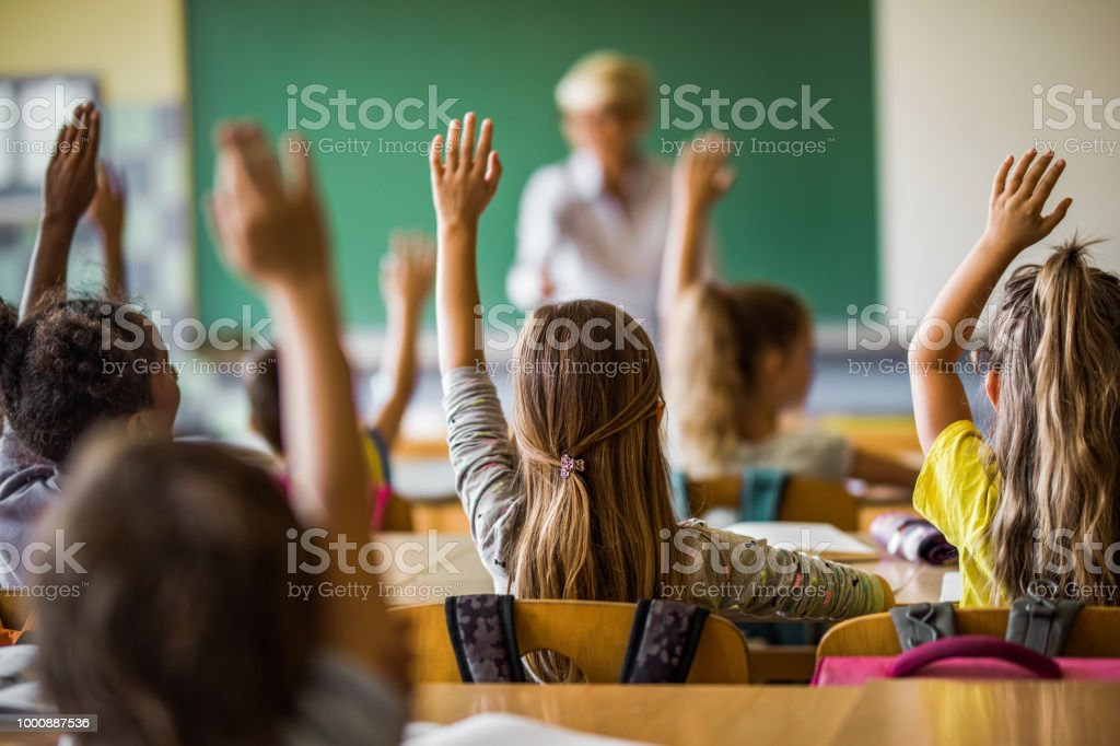 Back view of elementary students raising their arms on a class. stock photo