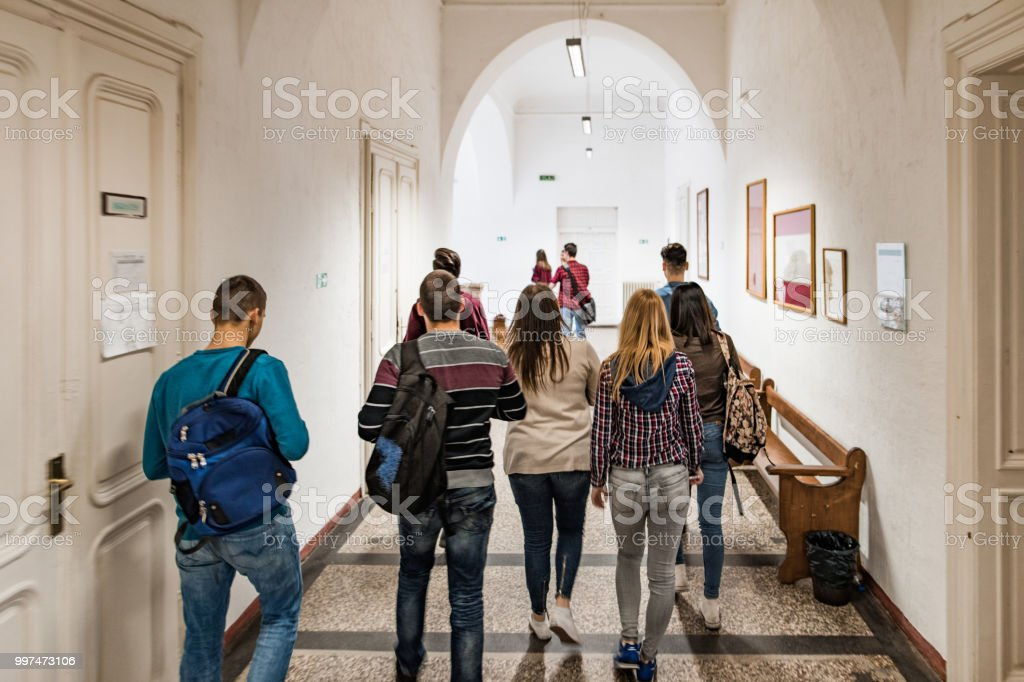 Back view of large group of students walking in the school lobby. stock photo