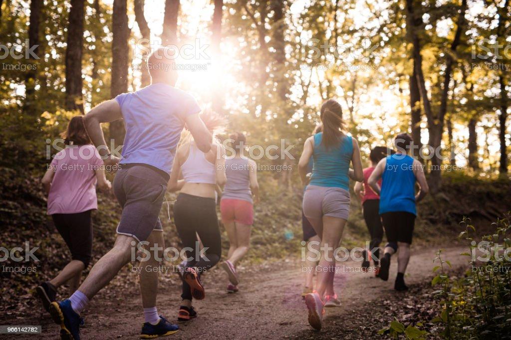 Baksidan på maratonlöpare under tävlingen i naturen. - Royaltyfri Aktiv livsstil Bildbanksbilder