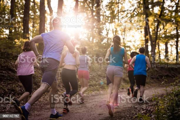 Baksidan På Maratonlöpare Under Tävlingen I Naturen-foton och fler bilder på Aktiv livsstil