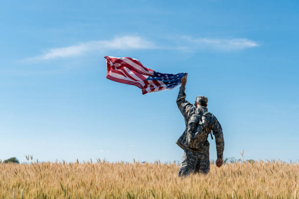back view of soldier in military uniform standing in field with golden wheat and holding american flag - tropa imagens e fotografias de stock