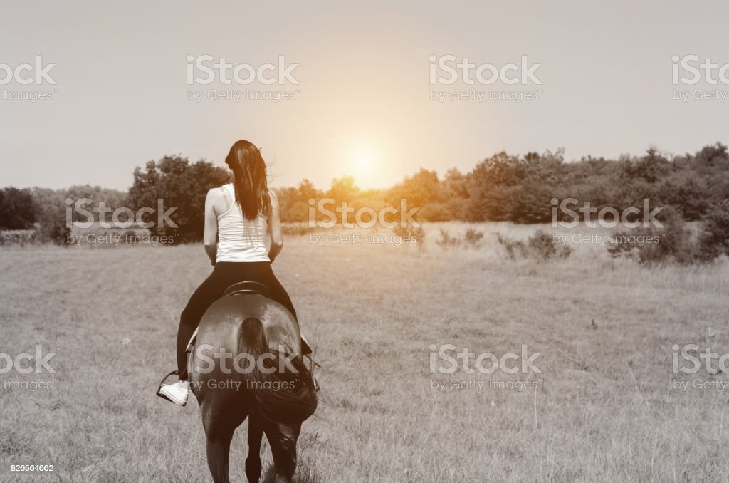 back view of woman ridding horse in sunset stock photo