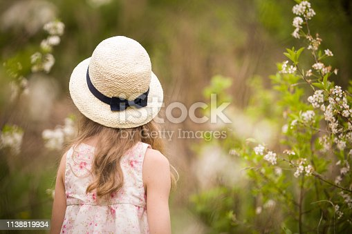 istock Back view on a little girl with long hair in a straw hat. Child walking in cherry blossom garden. Kid girl in a blooming park, outdoors. 1138819934