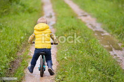 istock Back view on cute toddler boy riding his bike. Child on bicycle in the park. 1205225295