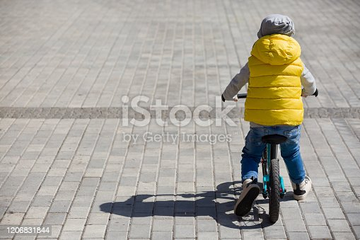 istock Back view on cute toddler boy riding his bike. Child on bicycle in the park. 1206831844