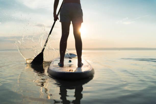 back view woman waist down paddleboaring on lake at sunset stock photo