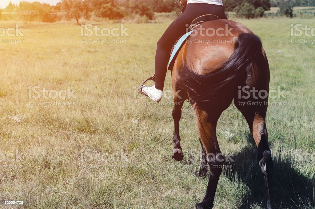 back woman cowgirl riding a horse stock photo