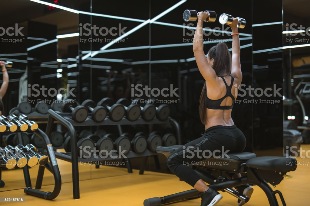 Back workout in a gym stock photo
