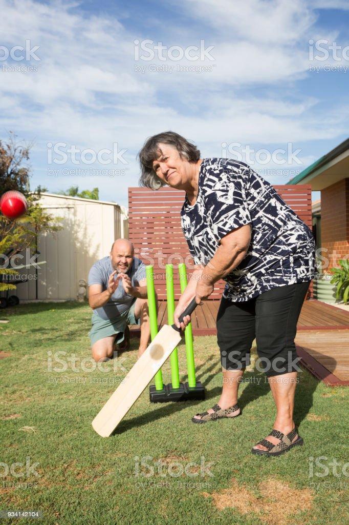Back Yard Cricket stock photo