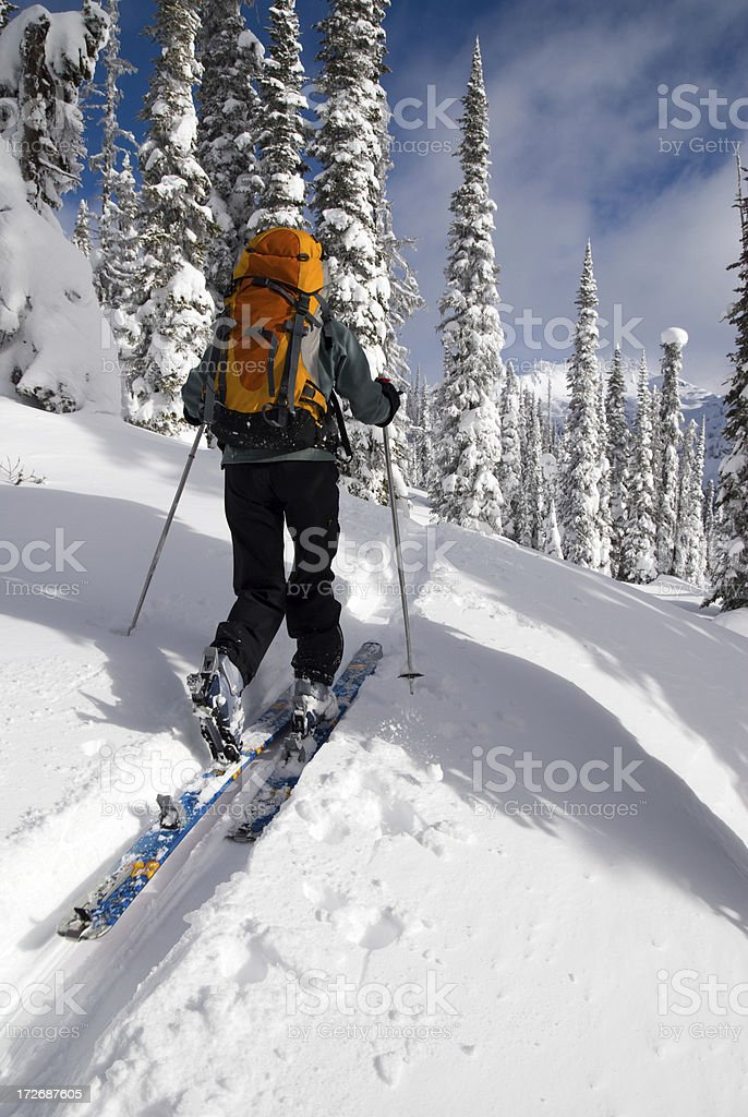 Backcountry Skiing Uptrack stock photo