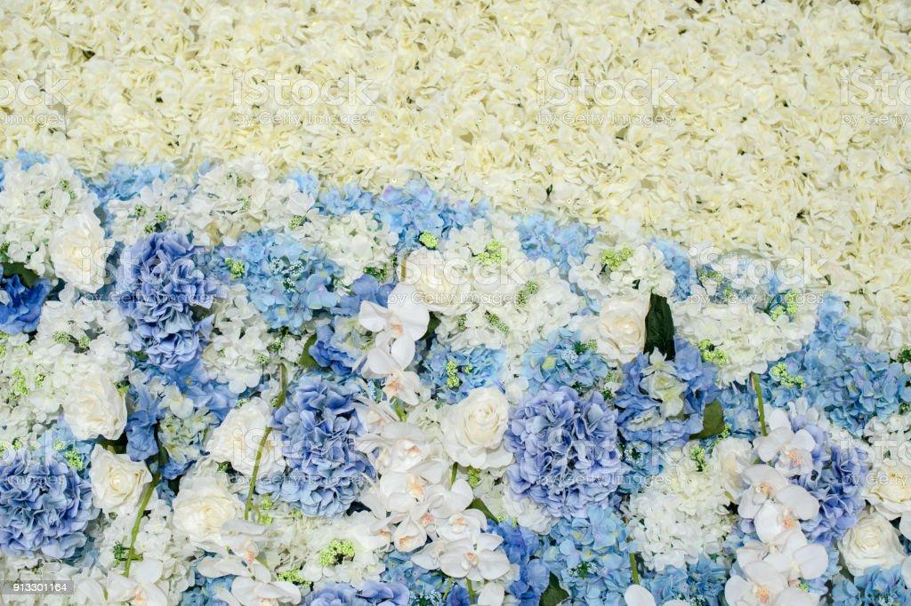 Backdrop Flowers Arrangement Beautiful Flowers Background For