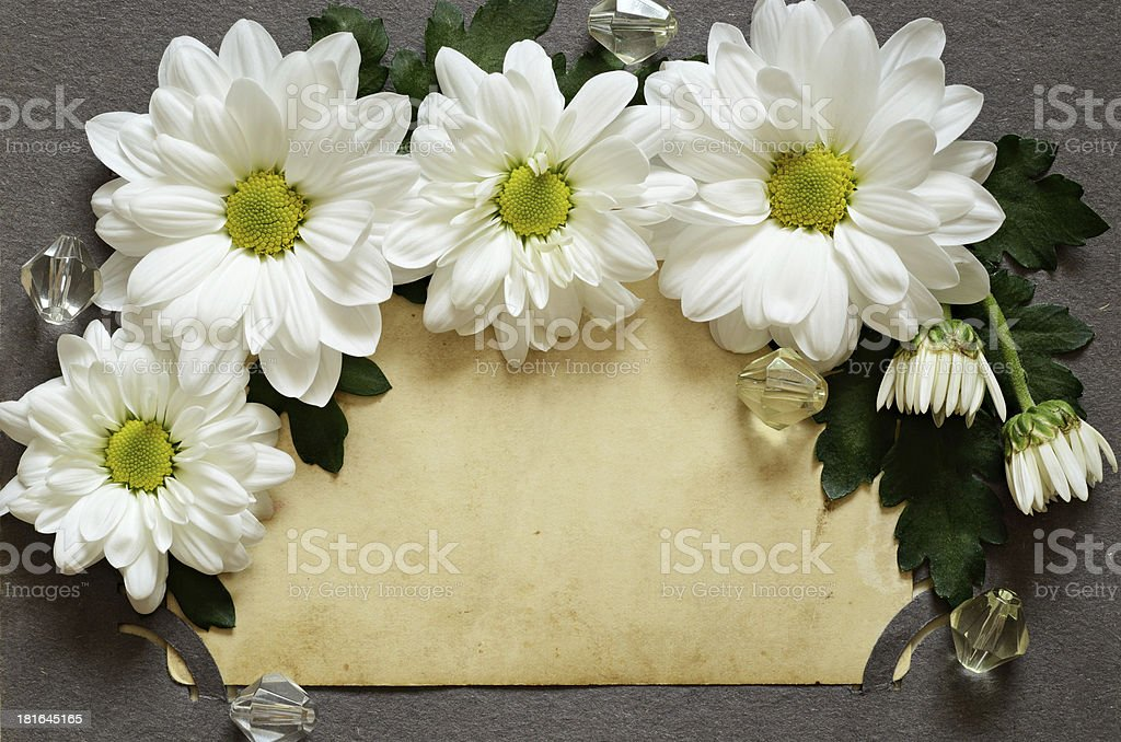 Backdrop of old photo with daisies royalty-free stock photo